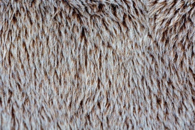 La fourrure de Brown est agréable au contact, pile Fond photos stock