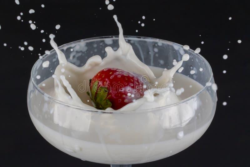 La fragola che cade in un vetro ha riempito di latte immagine stock libera da diritti