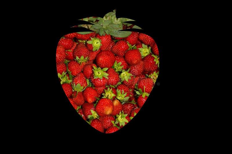 La fraise se connectent un fond noir illustration de vecteur