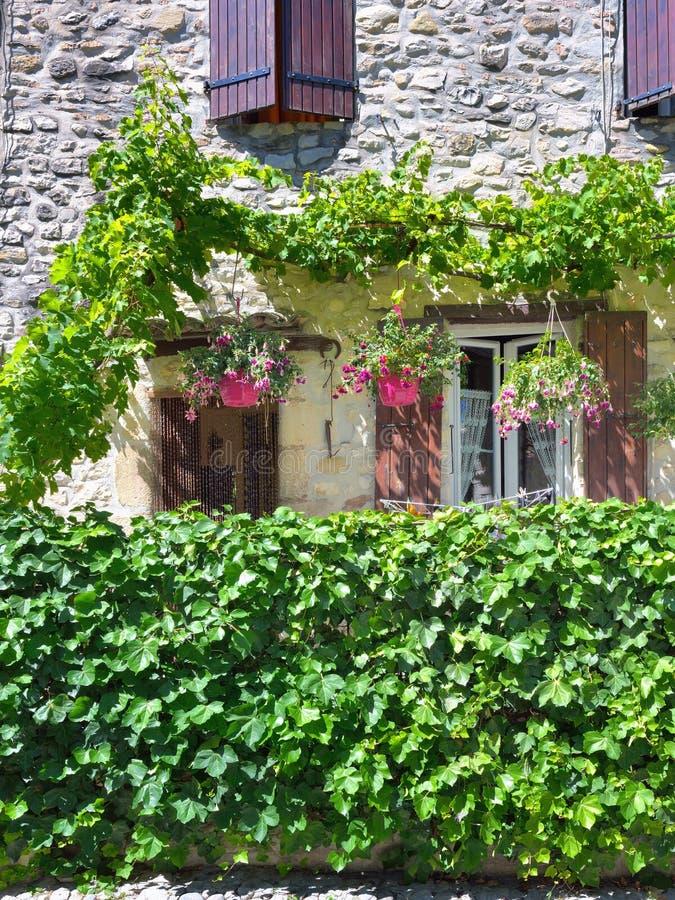 La Francia, Provenza Lattuga romana della La di Vaison fotografia stock libera da diritti