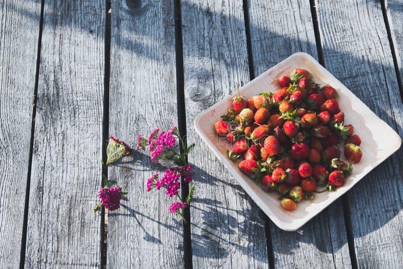 La fresa es una nuez multi fotos de archivo