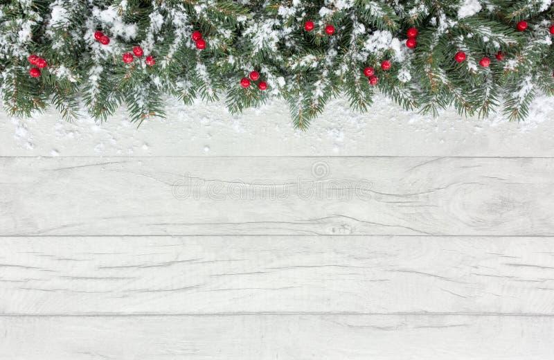 La frontière de Noël avec la neige a couvert les baies et le sapin rouges photographie stock libre de droits