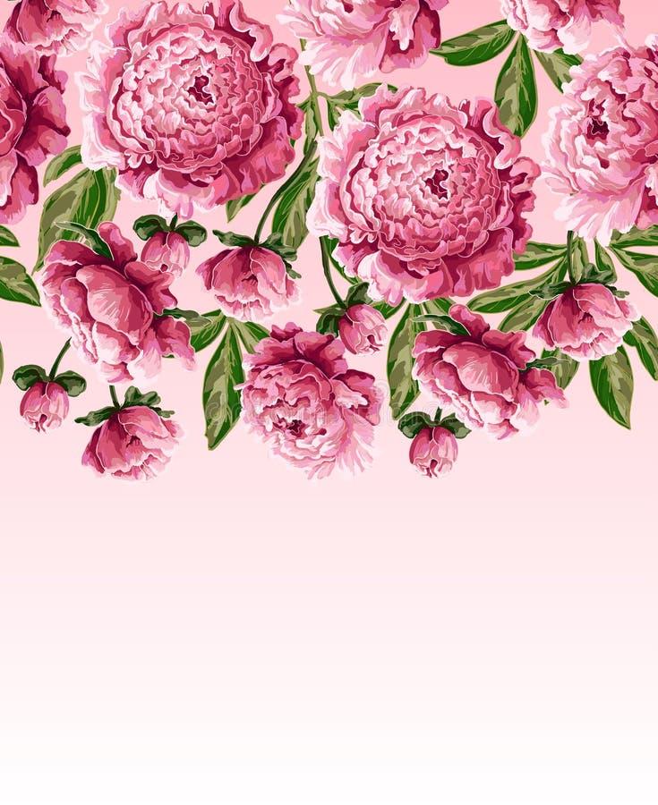 La frontière pour le T-shirt ou la robe de conception avec les pivoines roses fleurit Illustration de vecteur illustration de vecteur