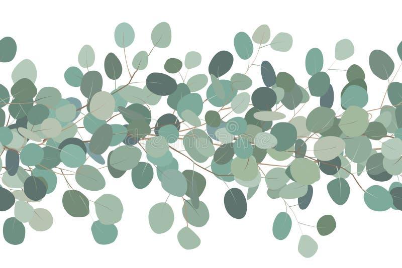 La fronti?re sans couture ?l?gante d'un eucalyptus s'embranche Trame florale Illustration tir?e par la main de vecteur Fond blanc illustration libre de droits
