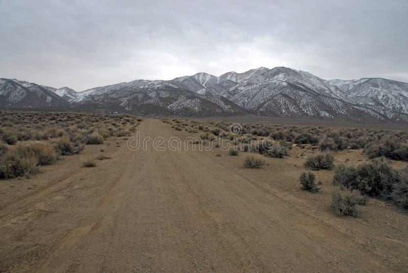 La frontiera d'avvicinamento alza le montagne, nel Nevada 13er e la parte migliore bianchi dello stato fotografia stock libera da diritti