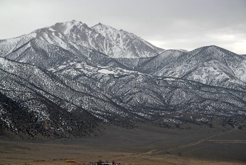 La frontiera d'avvicinamento alza le montagne, nel Nevada 13er e la parte migliore bianchi dello stato fotografie stock