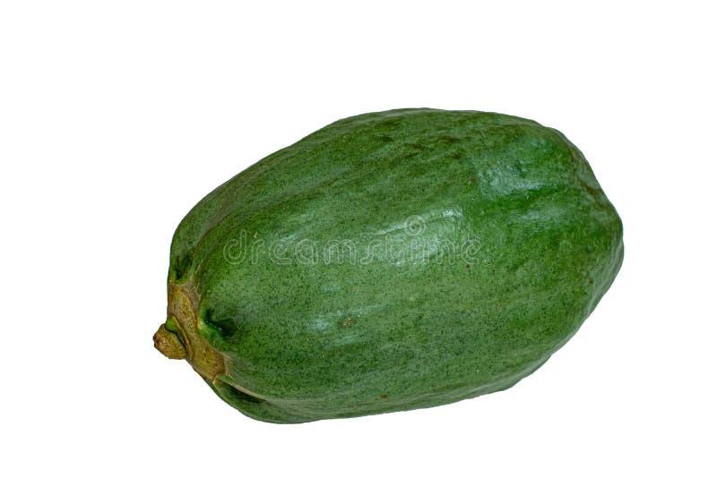 La fruta de la papaya o de la papaya es madura La fruta de la papaya es verde Es plantón de frutal tropical Somtam es comida popu fotos de archivo