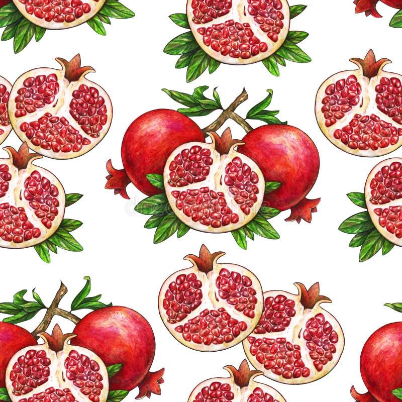 La fruta madura de la granada roja en una rama se aísla en un fondo blanco Ejemplo de la acuarela de la granada y del leav verde libre illustration
