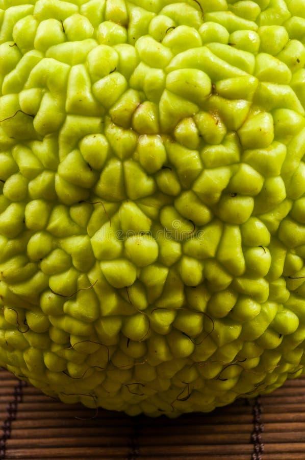 La fruta verde del pomifera del maclura, naranja de osage, manzana del caballo, nuez de Adán crece en la estera de bambú imagen de archivo