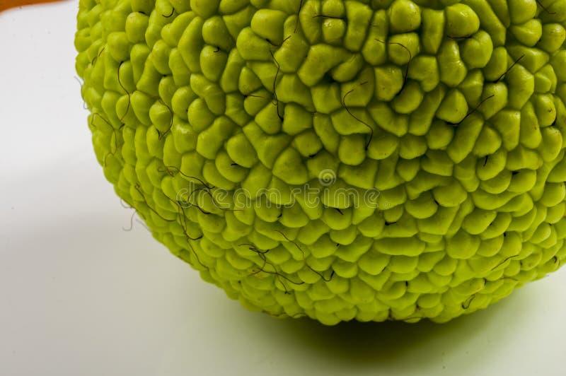 La fruta verde del pomifera del maclura, naranja de osage, manzana del caballo, nuez de Adán crece en la tabla de madera blanca foto de archivo libre de regalías