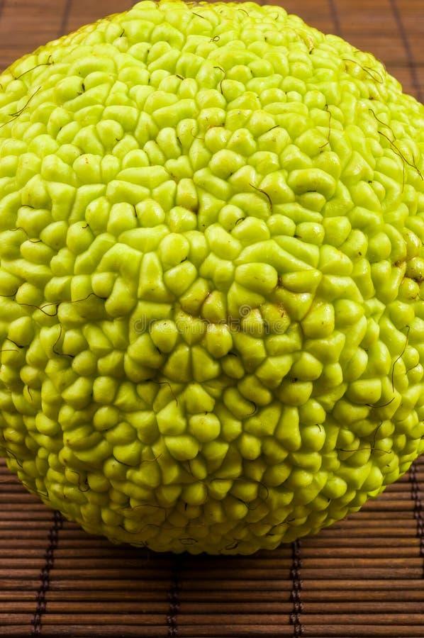 La fruta verde del pomifera del maclura, naranja de osage, manzana del caballo, nuez de Ad?n crece en la estera de bamb? imagen de archivo libre de regalías