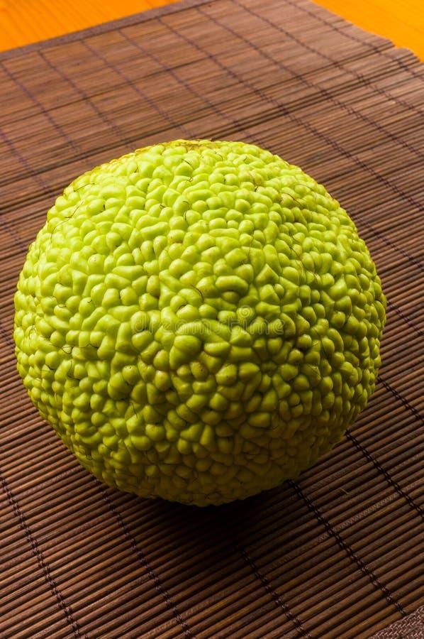 La fruta verde del pomifera del maclura, naranja de osage, manzana del caballo, nuez de Ad?n crece en la estera de bamb? foto de archivo libre de regalías
