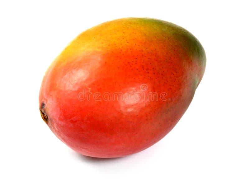 La frutta del mango isolata fotografie stock
