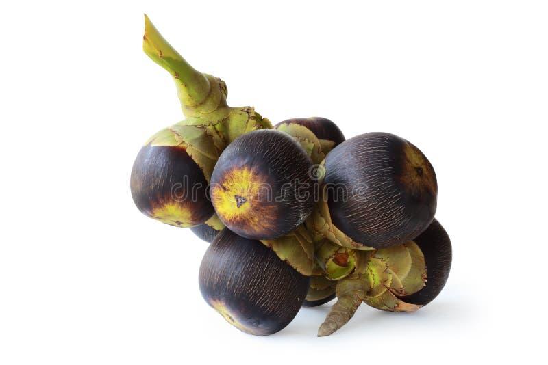 La frutta di Sugarpalm ha isolato sopra con il percorso fotografia stock libera da diritti