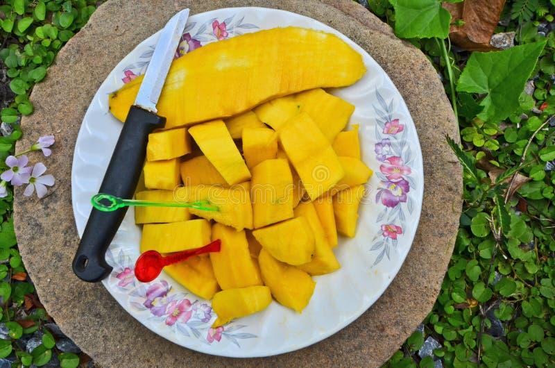 La frutta famosa squisita della Tailandia è piatto del mango fotografia stock libera da diritti