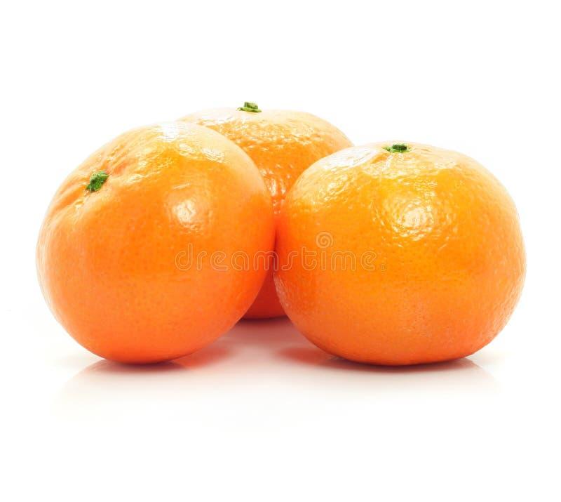 La frutta matura del mandarino ha isolato l'alimento fotografia stock