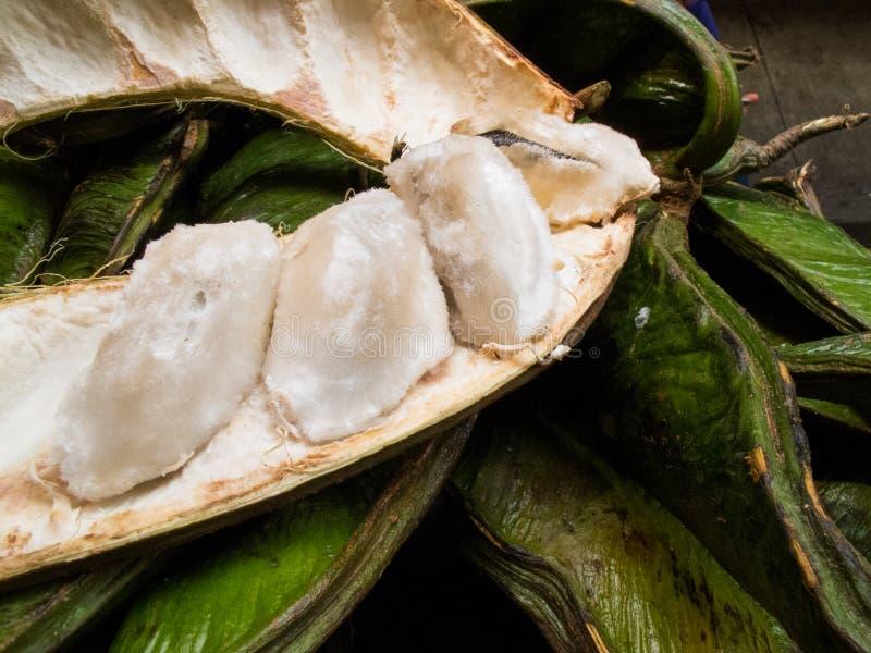 La frutta tropicale esotica ha chiamato il guama immagini stock
