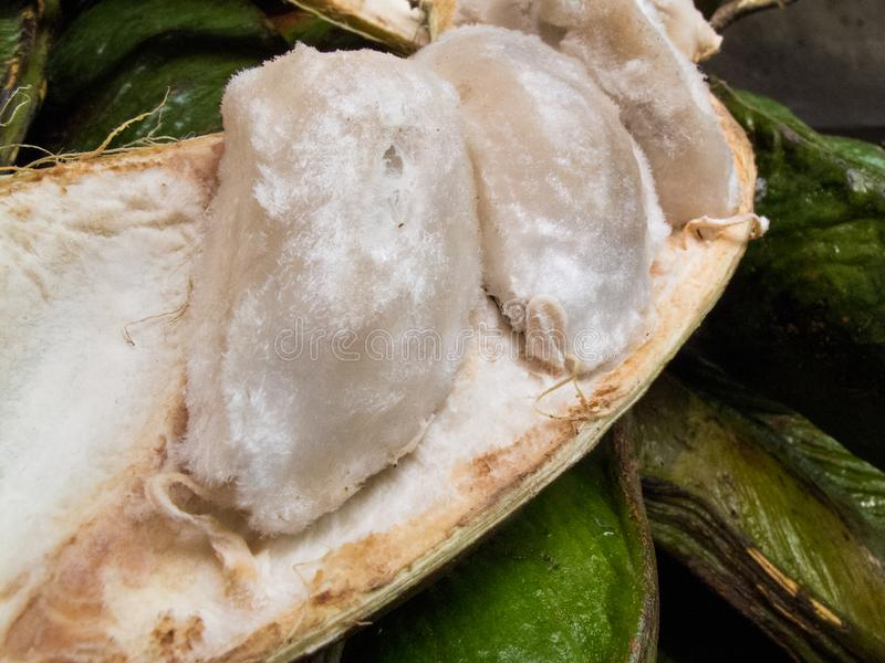 La frutta tropicale esotica ha chiamato il guama fotografia stock libera da diritti