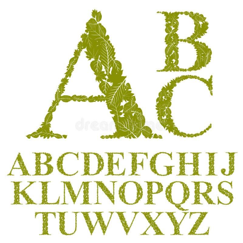 La fuente hecha con las hojas, las letras florales del alfabeto fijó, vector el desig ilustración del vector