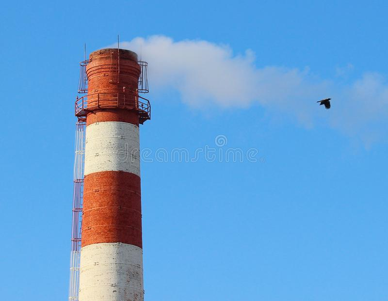 La fumée blanche d'une cheminée d'ensemble industriel contre un ciel bleu et un vol d'oiseau dans une fumée traînent photos libres de droits
