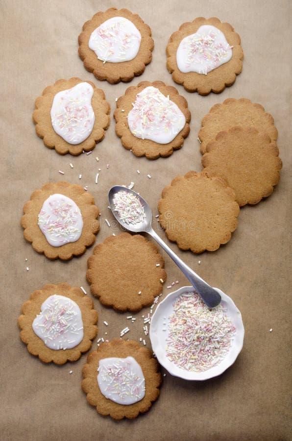 La galleta con la formación de hielo y asperja fotografía de archivo libre de regalías