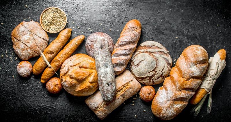 La gama de diversos tipos de pan fragante foto de archivo
