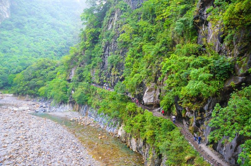 La garganta hermosa de Taroko en el parque nacional de Taroko, Taiwán fotografió en un día brumoso, lluvioso Rocas, árboles verde imagen de archivo