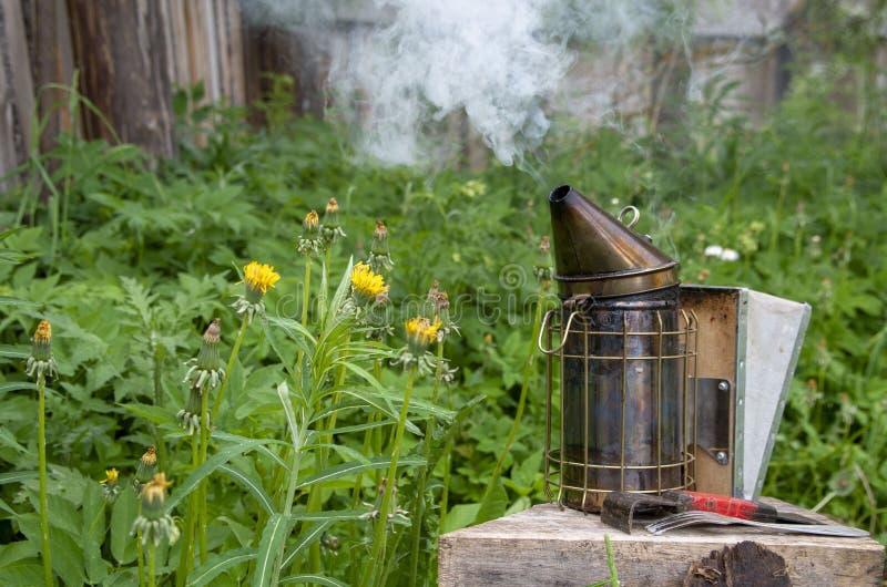 La gente accende il dispositivo per la fumigazione delle api a fumigazione con fumo fotografia stock libera da diritti