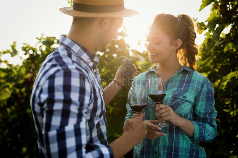 La gente che assaggia vino in vigna immagine stock libera da diritti