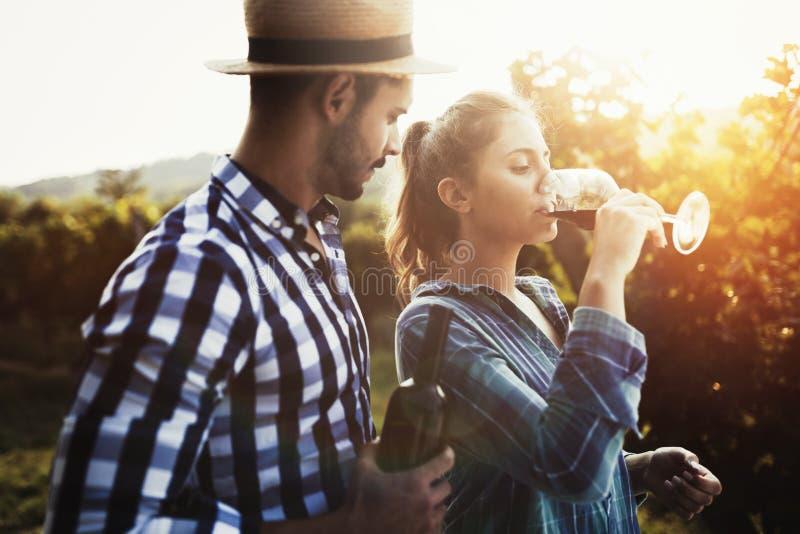 La gente che assaggia vino in vigna fotografie stock libere da diritti
