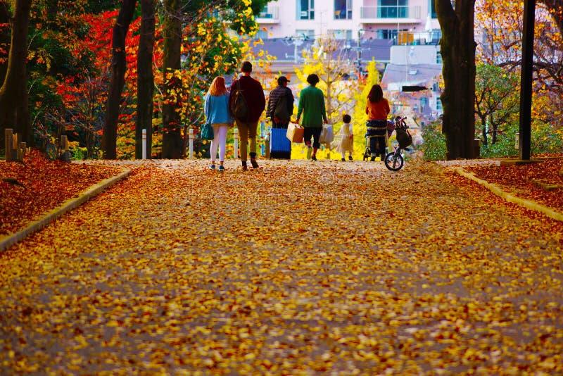 La gente che cammina la strada delle foglie cadute fotografia stock