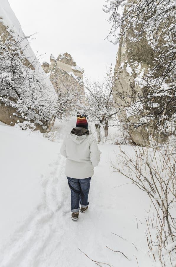 La gente che cammina sulla neve immagine stock