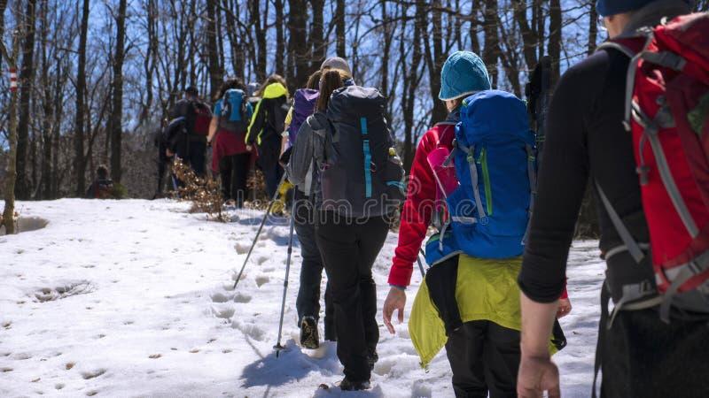La gente che fa un'escursione sulla montagna fotografia stock libera da diritti