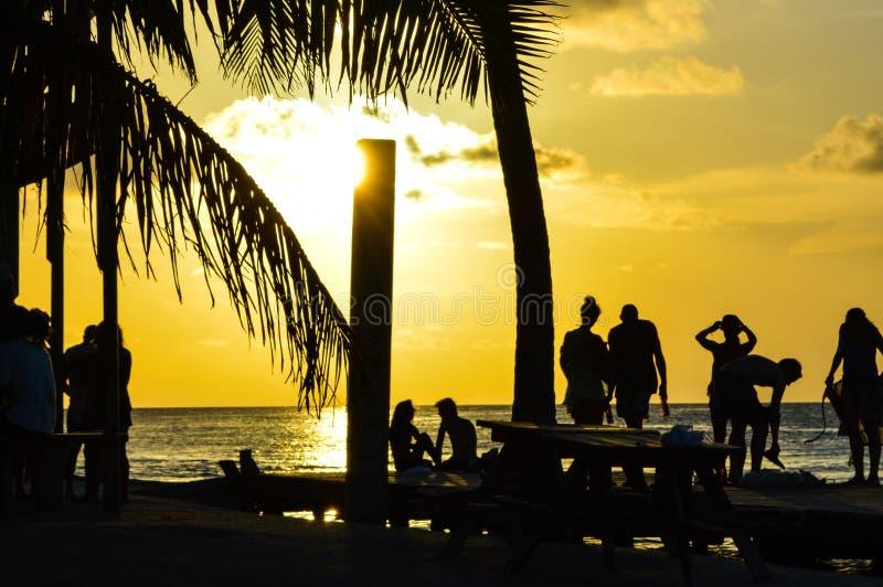 La gente che gode di un tramonto caraibico, spaccatura, calafato di Caye, Belize immagine stock