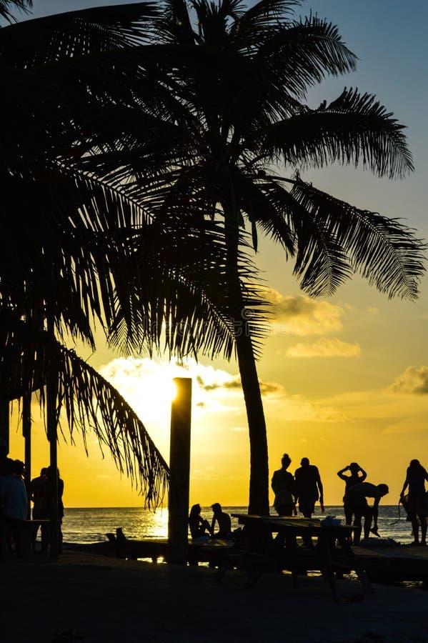La gente che gode di un tramonto caraibico, spaccatura, calafato di Caye, Belize fotografie stock