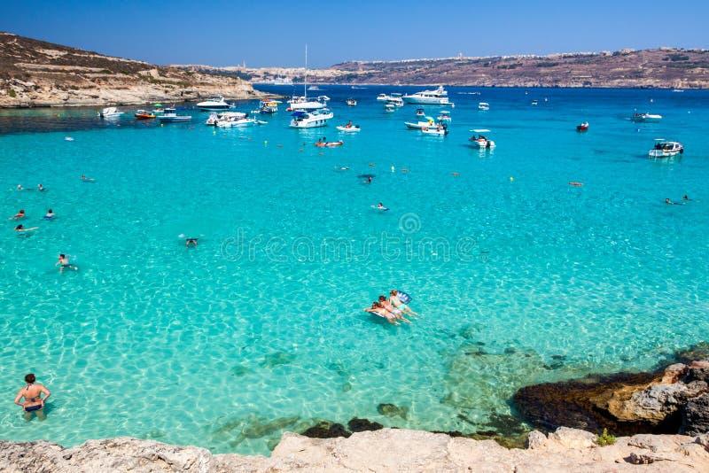La gente che nuota nella laguna blu a Comino - Malta immagine stock