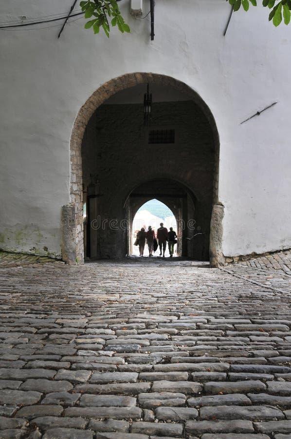 La gente che passa tramite il vecchio portone della città in Motovun, Croazia immagine stock