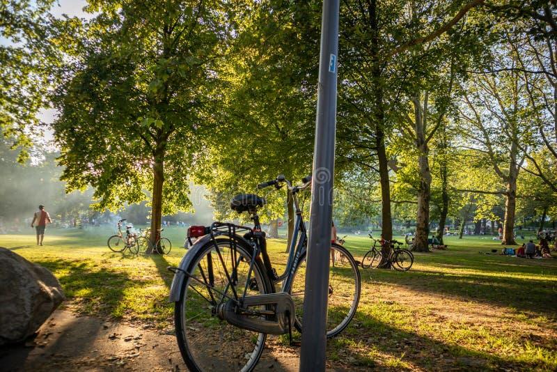 La gente che riposa sull'erba nel parco olandese di Rotterdam immagini stock