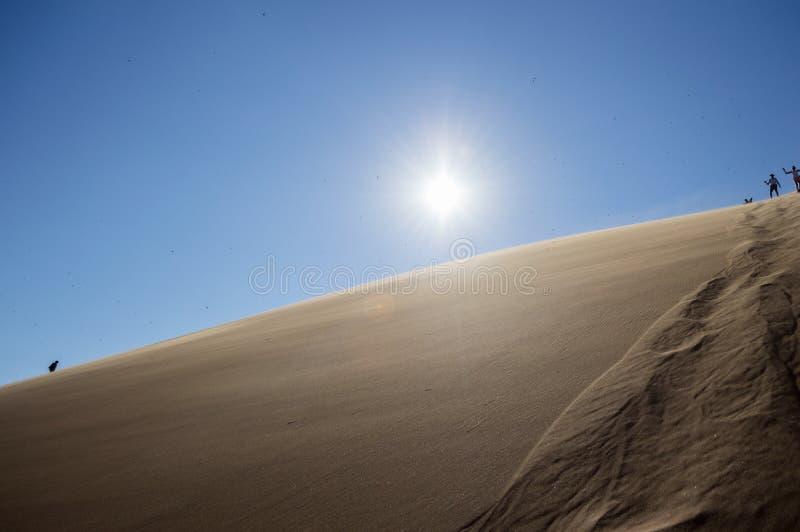 La gente che scala su e giù Big Daddy Dune, paesaggio del deserto fotografia stock libera da diritti