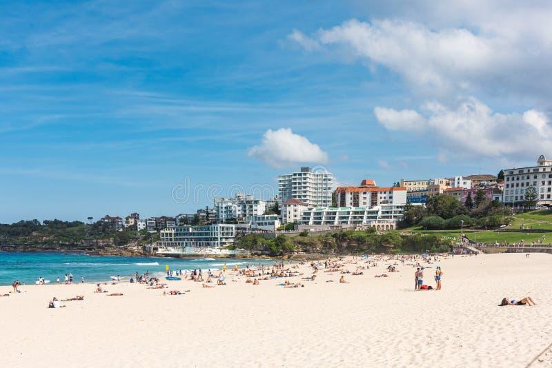 La gente che si rilassa a Bondi tira a Sydney, Australia fotografia stock libera da diritti