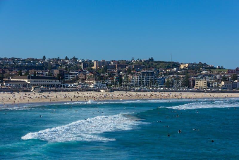 La gente che si rilassa e che ha sunbath alla spiaggia di Bondi su bella estate a Sydney, immagine stock libera da diritti