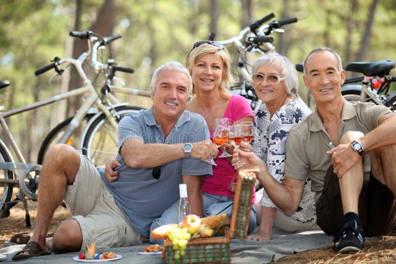 La gente che tosta al picnic immagine stock