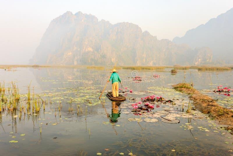 La gente con la piccola barca su Van Long accumula, provincia di Ninh Binh, Vietnam fotografie stock