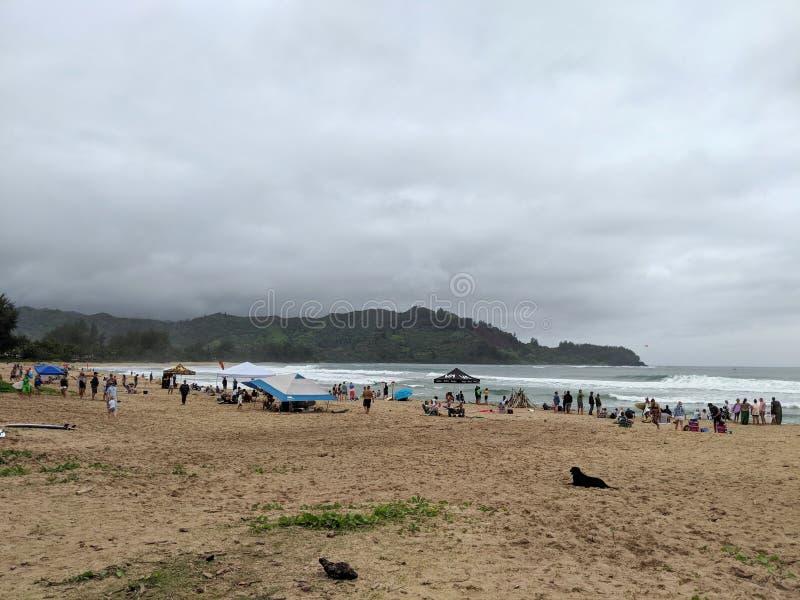 La gente cuelga hacia fuera en la playa de Hanalei con las tiendas durante competencia de la resaca imagen de archivo libre de regalías