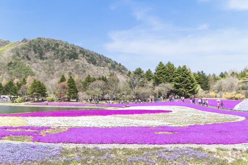 La gente de Tokio y de otras ciudades viene al Mt Fuji y goza del th imágenes de archivo libres de regalías