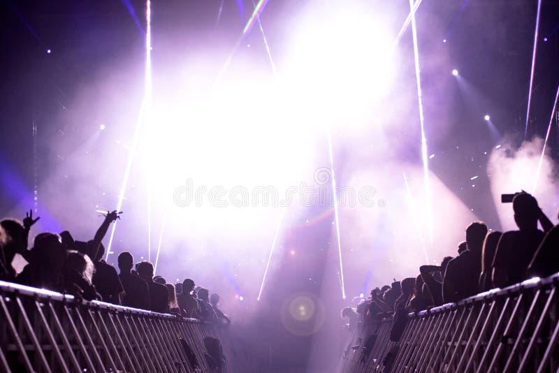 La gente del partito al concerto immagini stock libere da diritti