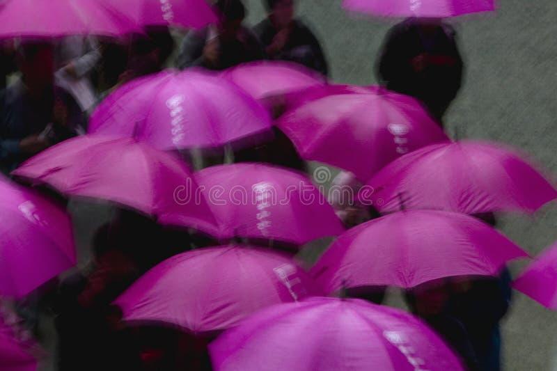 La gente del santuario shintoista di Kapan Nikko Tosho-Gu sotto gli ombrelli porpora ha elevato la vista immagine stock