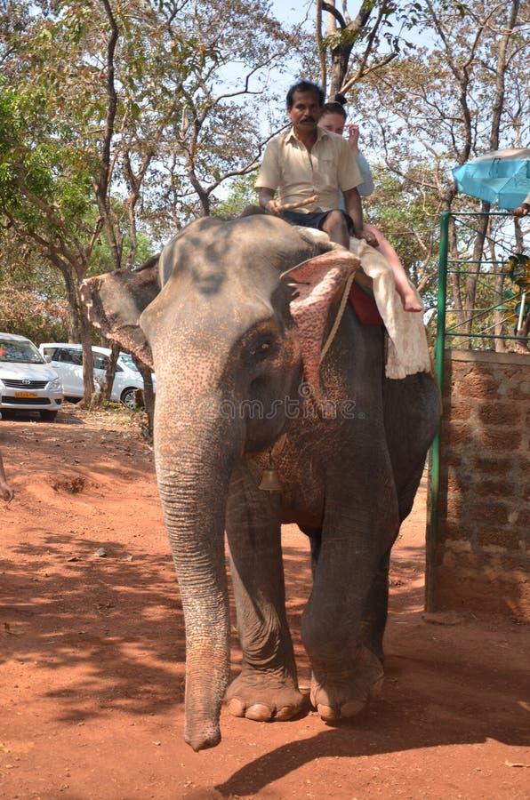 La gente di giri dell'elefante immagine stock libera da diritti