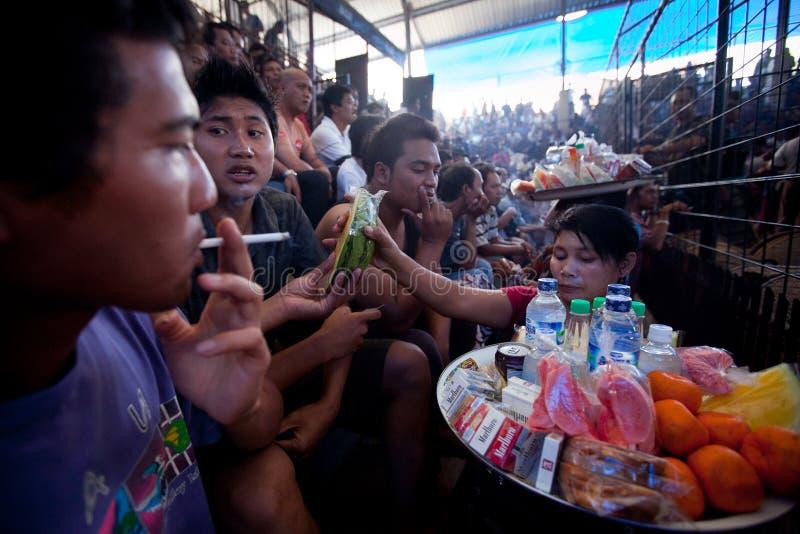 La gente durante il cockfighting di balinese fotografie stock