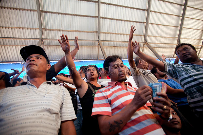 La gente durante il cockfighting di balinese immagine stock